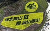 长庆油田封井1145口恢复植被1500多亩